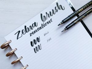 Zebra Zensations Brush Pen